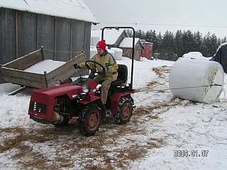 Galvijų šėrimas žiemą